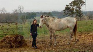 En la escuela N° 39 de Villa Urquiza nació la cría de un caballo rescatado del cirujeo