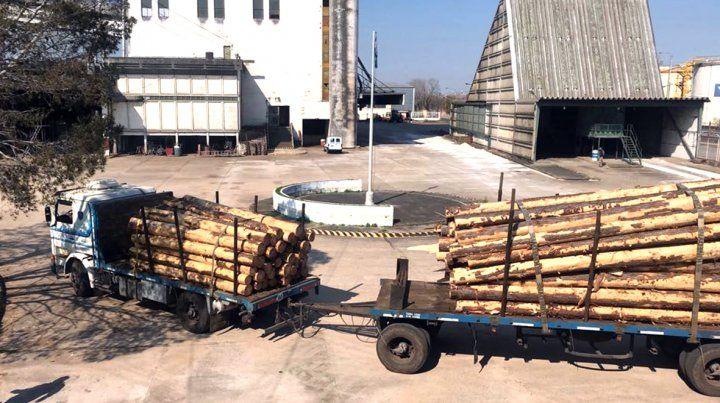 ACOPIO. El primer embarque tuvo como destino China. Desde el jueves llegan camiones para otro envío.