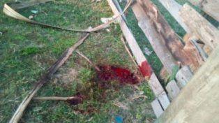 El joven que mató a su madre y su abuela había hecho un pozo, creen que para enterrarlas