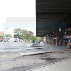 UTA adhirió al paro nacional del 25 y no habrá transporte público en Entre Ríos