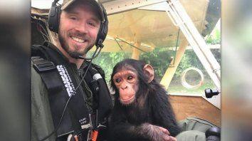 rescatado de cazadores furtivos, bebe chimpance enternece copilotando una avioneta
