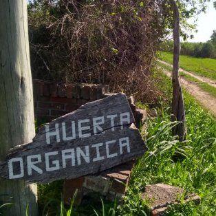 En La Picada el camino conduce a la producción de alimentos sanos.