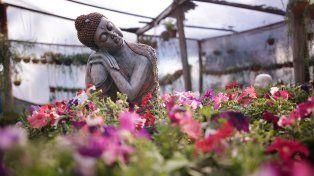La Primavera es la estación de los colores. Para las plantas es época de fiesta.