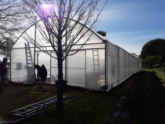En la escuela Almafuerte tienen listo el moderno vivero de plantas nativas