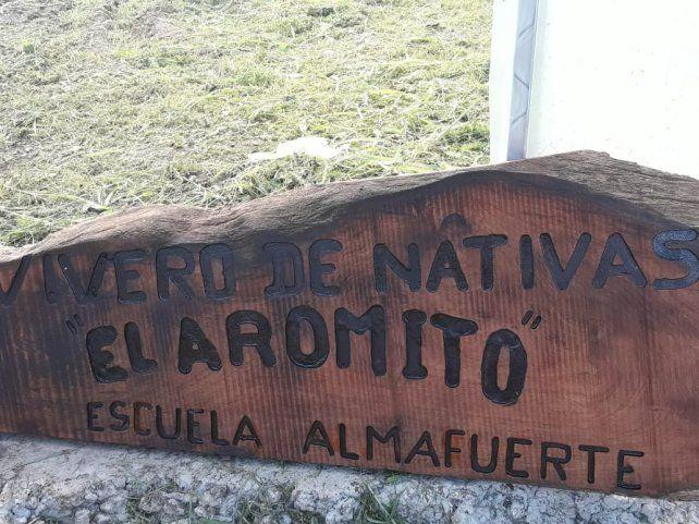 Cuentan que el árbol cicatriza el monte cuando sufre la deforestación.