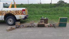 decomisaron mas de medio centenar de aves silvestres en dos procedimientos