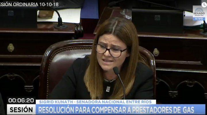 Rechazo. La senadora por Entre Ríos criticó la idea del gobierno de compensar a las empresas.