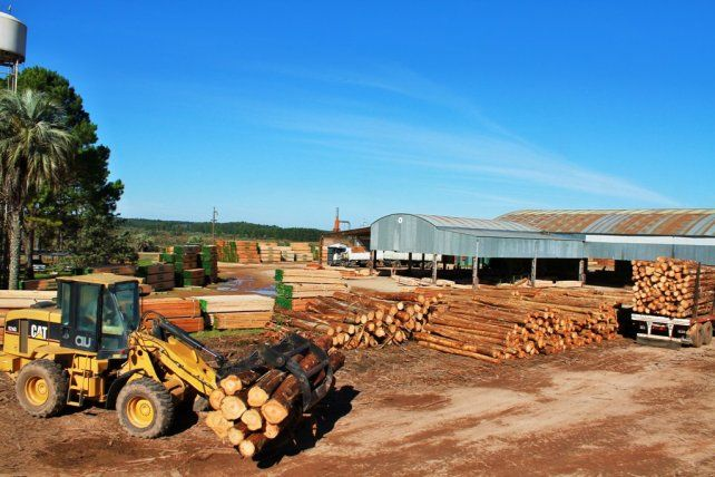 Forestoindustria. Es uno de los sectores que más sufrió el incremento de los costos de producción.