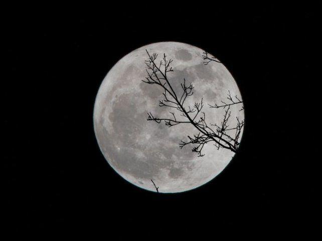 Cómo impactará la Luna llena a cada signo del zodiaco. Foto: Unsplash