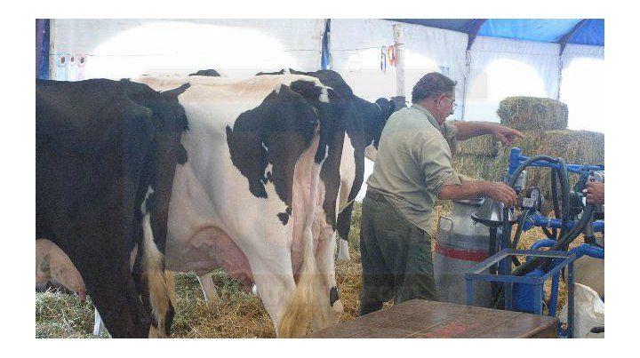 Solo las industrias lácteas y avícolas quebraron la racha negativa general