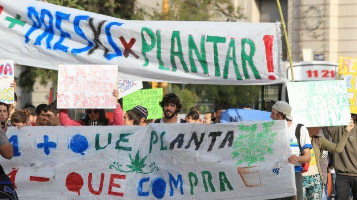 Uno más que planta es uno menos que compra