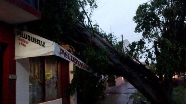 Una cola de tornado afecto al menos 10 cocheras y vehículos en barrio Paraná II