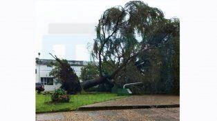 Violenta tormenta en Basavilbaso
