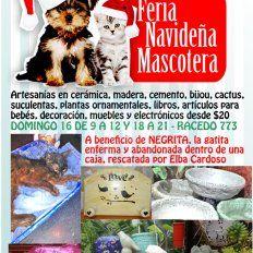 Feria navideña mascotera a beneficio de la gatita encontrada en una caja
