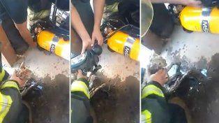 Los Bomberos Zapadores le salvaron la vida a un gato