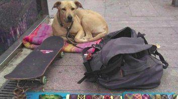 Sota cuidaba las pertenencias de su dueño en Barcelona.