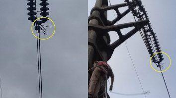 Enersa descubrió alambres de púas en la red.