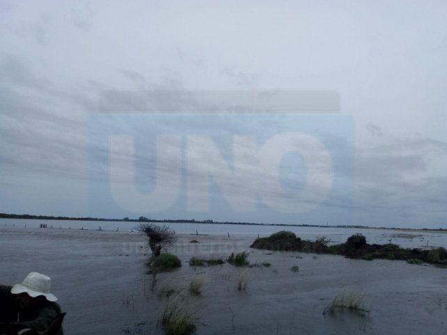Mirá los videos con las inundaciones en zonas rurales de Nogoyá y Basavilbaso
