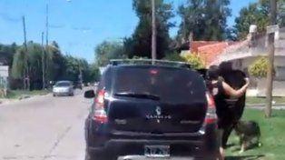Video: un perro corrió 15 cuadras detrás de la familia que lo abandonó