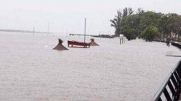 la costanera de concordia otra vez bajo el agua