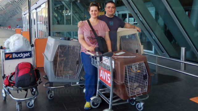 Con los perritos en el avión, directo a Madrid