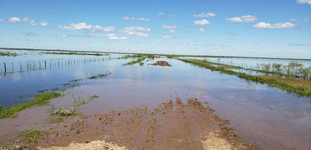 Esperan que la mejora climática traiga alivio desde hoy al norte y a la costa del Uruguay