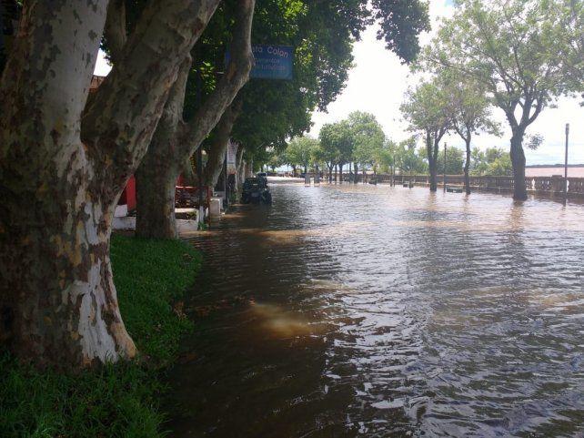 Colón. Las aguas del Uruguay superaron el murallón y anegaron la avenida Costanera.
