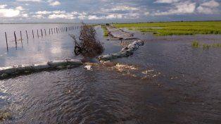 La Nación declaró la emergencia hídrica en las zonas inundadas del NOA y el Litoral