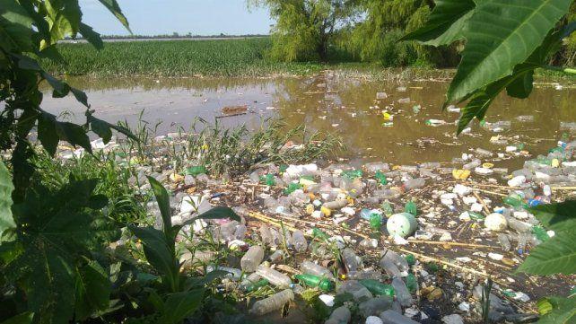 En toda la orilla aparece el plástico.