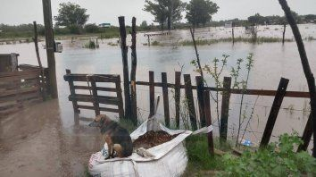barrios de gualeguay estan gravemente afectados por las intensas lluvias