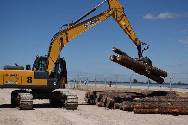 Anuncian que durante 2019 saldrán más de 12 buques con madera desde el Puerto Ibicuy