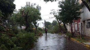 Feroz temporal de lluvia, viento y granizo provocó graves destrozos en Santa Fe y Córdoba