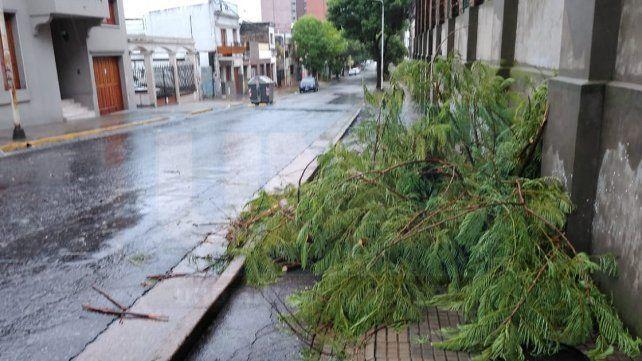 La tormenta se sintió fuerte en la madrugada de este lunes, en Paraná