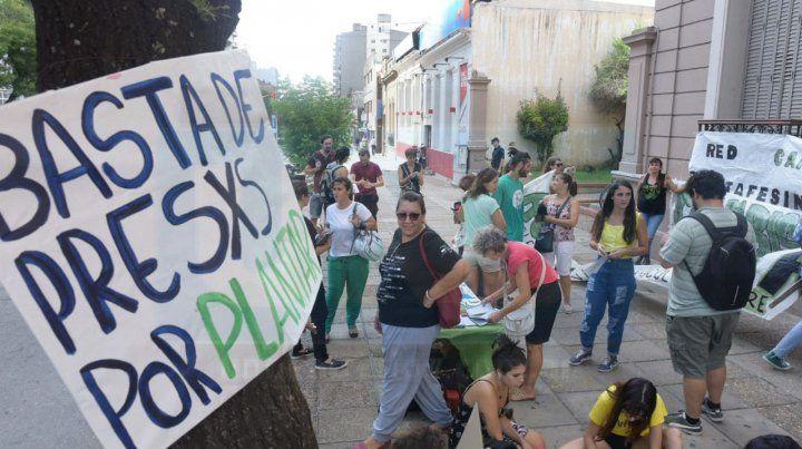 Se manifestaron frente a la Cámara Federal en defensa del autocultivo de cannabis