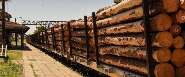Con los puertos operativos, se reactiva el ferrocarril de carga