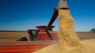 Por la tensión entre EE.UU y China cae el precio de la soja y Argentina pierde US$ 3.000 millones
