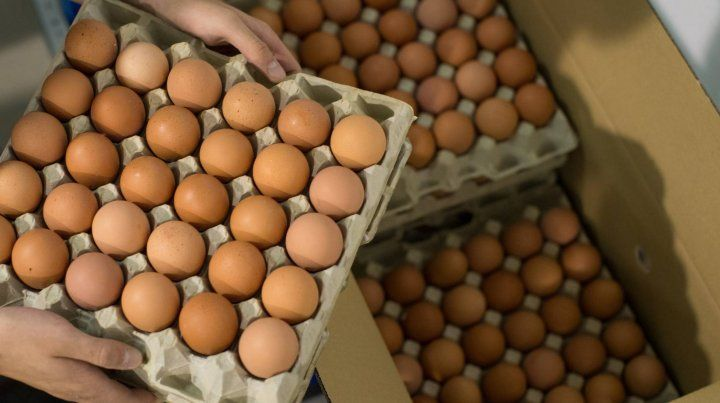 Huevos. Las claras de huevo (las verdaderas) han sido durante mucho tiempo fuente de proteínas.