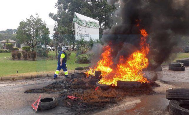 Patronal ratificó el despido de 10 trabajadores de Egger (ex Masisa)