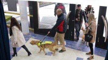 Perros guía para ciegos, una herramienta que cobra cada vez más valor