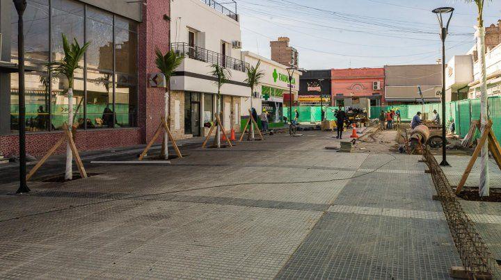 Las nuevas palmeras embellecen la peatonal de calle Venezuela