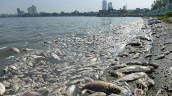 calentamiento global reducira fauna marina