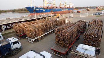 Ritmo constante. Una gran cantidad de camiones ocupan toda la zona portuaria mientras dura la carga.