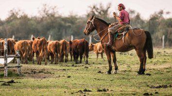 uatre actualizo la escala salarial para trabajadores rurales