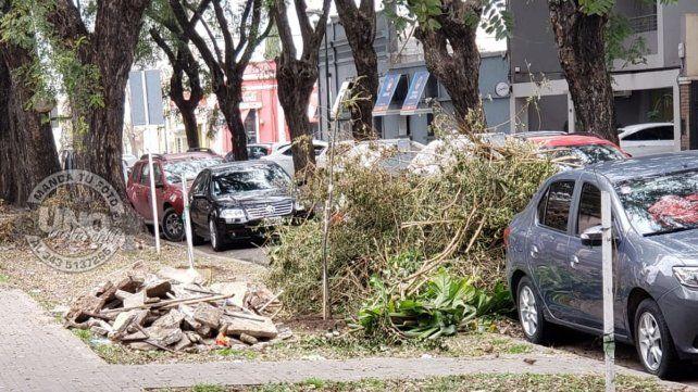 Mugre y escombros en la puerta de una escuela