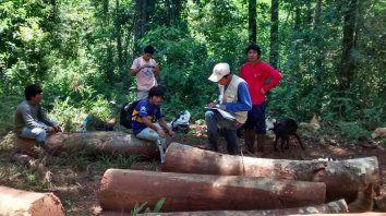 Tekohá. Relaciones económicas, sociales y organización político-religiosa en la vida guaraní .
