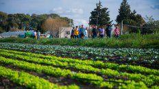 operadores del mercado central porteno de visita en el parque horticola