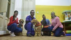 Equipo. Andrea, Santiago, Martín y Julieta son los referentes del proyecto Tacanino, junto a Lola, Elena y Almendra.