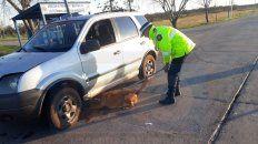 Marcó. La perra adiestrada detectó la droga dentro del vehículo.