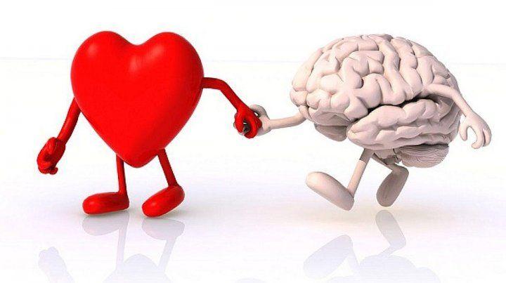 Inteligencia Emotiva