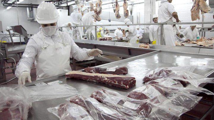 El frigorífico Alberdi aguarda la habilitación para exportar a China